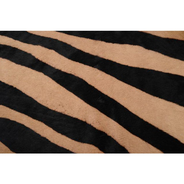 Zebra Printed (Ink on Caramel) Cow Hide: All of our Hair Cow Hides are full hides and measure approximately 7'w x 8'l....