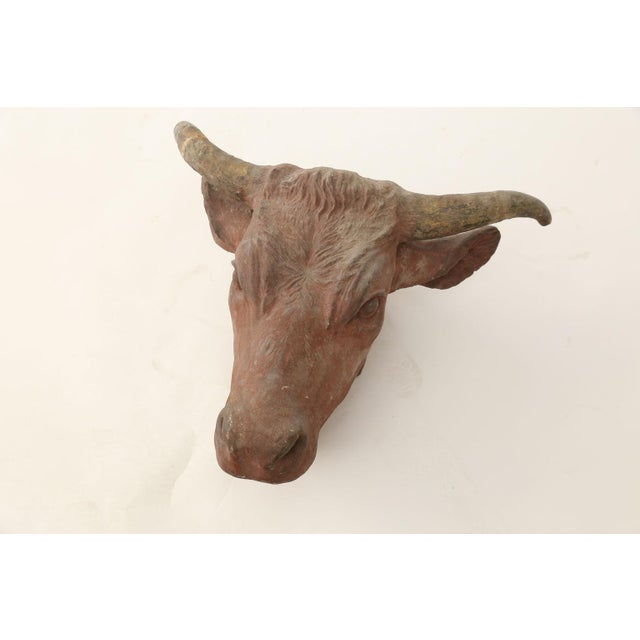 1910s Painted Concrete Bull Head For Sale - Image 5 of 8