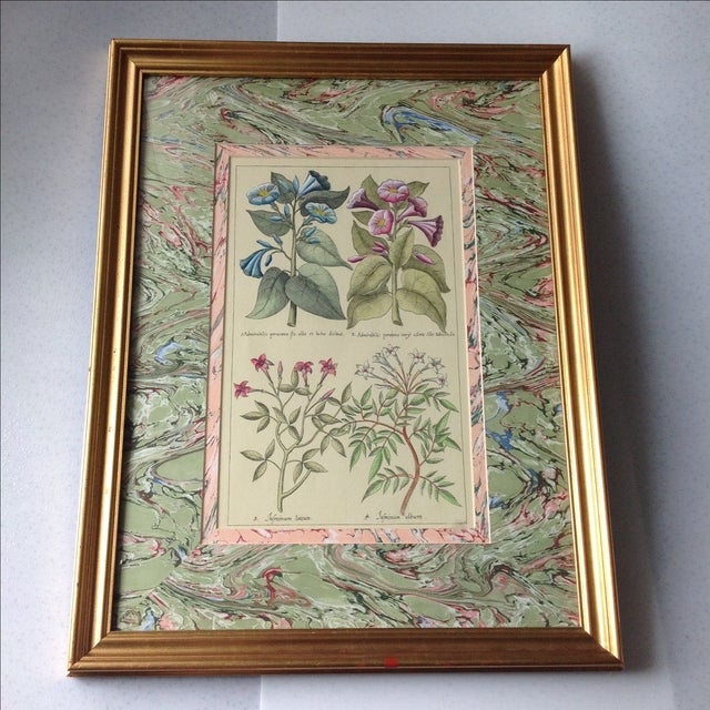 Exquisite John Richard hand painted floral botanical print custom framed under glass. Custom double matting features...