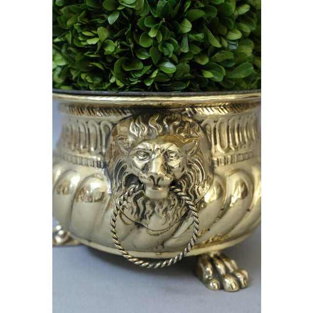Early French Brass Jardiniere with Original Zinc Liner - Image 6 of 7