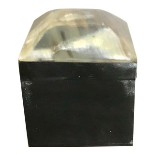 Natural Organic Square Horn Box For Sale