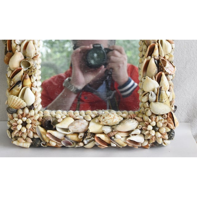 Shabby Chic 1960s Beach Nautical Seashell Encrusted Mirror For Sale - Image 3 of 7