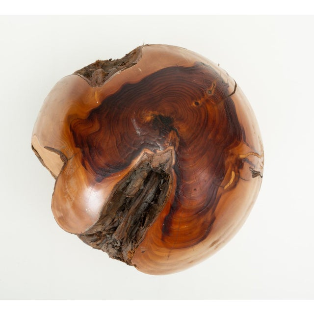 1970s Single Turned Wood Object by Chuck McLaughlin For Sale - Image 5 of 13