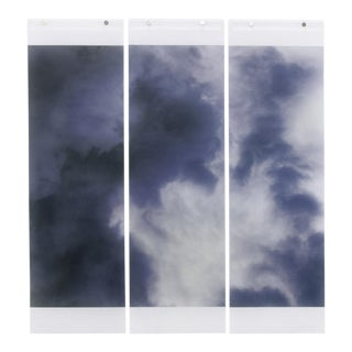"Jeri Eisenberg ""Songs of the Sky, Revisited, No.10"""