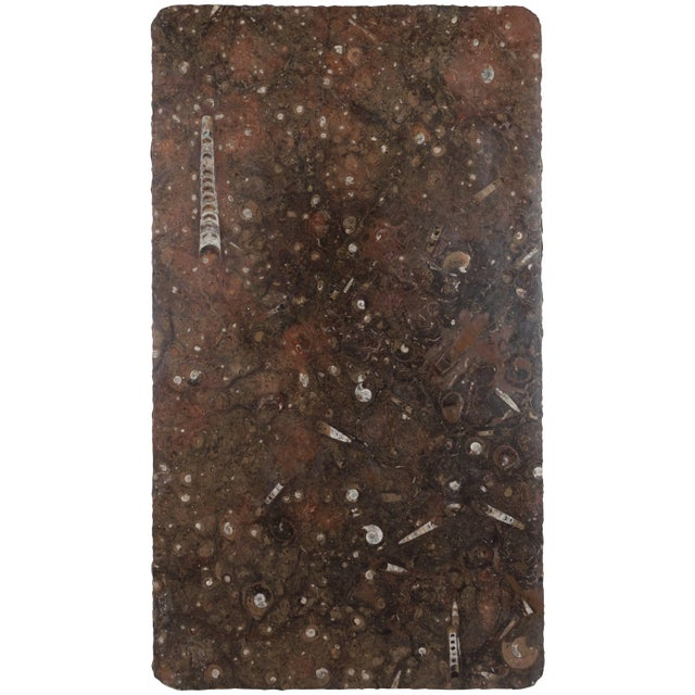 Brown Moroccan Fossil Stone Marble Slab For Sale - Image 8 of 8