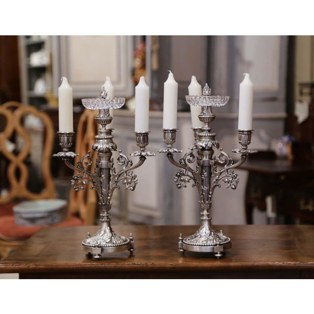 Pair of 19th Century French Silvered Bronze Candelabras and Crystal Bobeche For Sale In Dallas - Image 6 of 13
