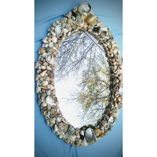 Tan Grotto Style Shell Mirror For Sale - Image 8 of 9