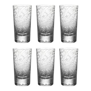 ARTEL Narcissus Highball Glass, Clear, Set of 6 For Sale