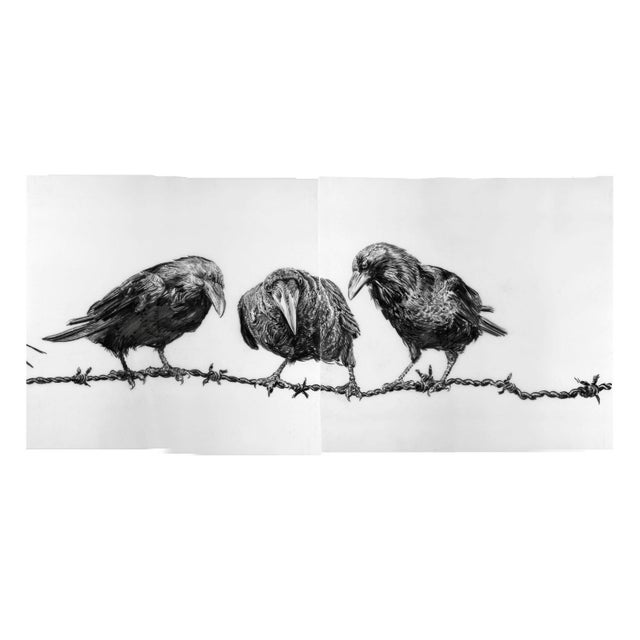 "Contemporary Contemporary ""Crows on Wire"" Rick Shaefer Charcoal Print For Sale - Image 3 of 5"