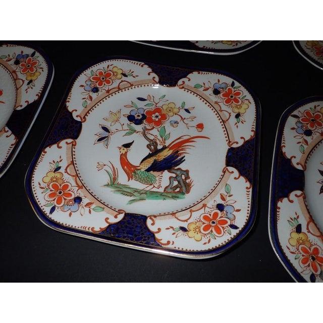 Wood & Hulme Burslem England Denbigh Peacock and Bird of Paradise Painted  Plates - Set of Nine