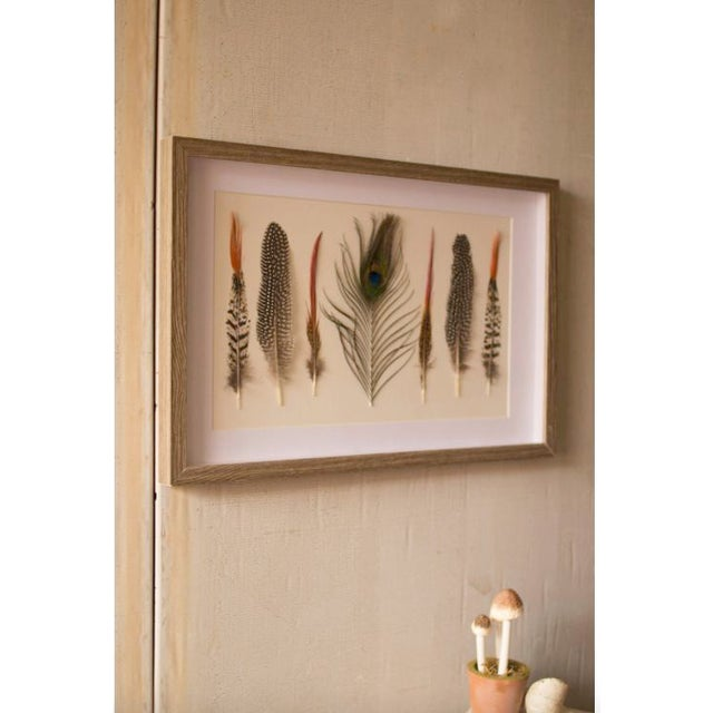 Seven Feathers Framed Under Glass made by Kalalou. Each feather is real and mounted on back matting in shadow box style....