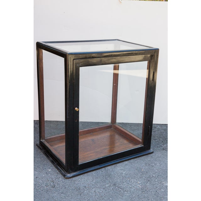 This is an Anglo-Indian object cabinet with a newly ebonized exterior. The inside has the original rosewood finish. It...