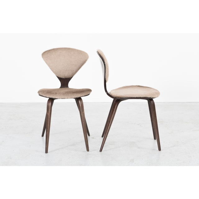 Plycraft Set of 6 Norman Cherner for Plycraft Dining Chairs For Sale - Image 4 of 11