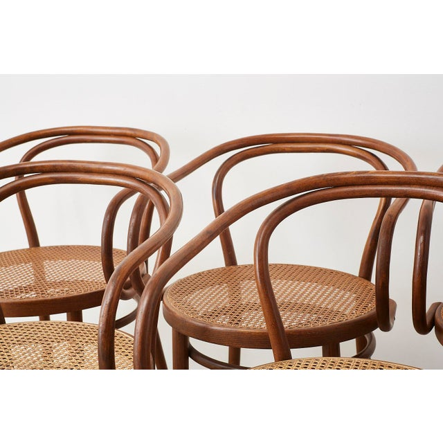 Thonet 209 Bentwood Cane Armchairs - Set of 8 For Sale In San Francisco - Image 6 of 13