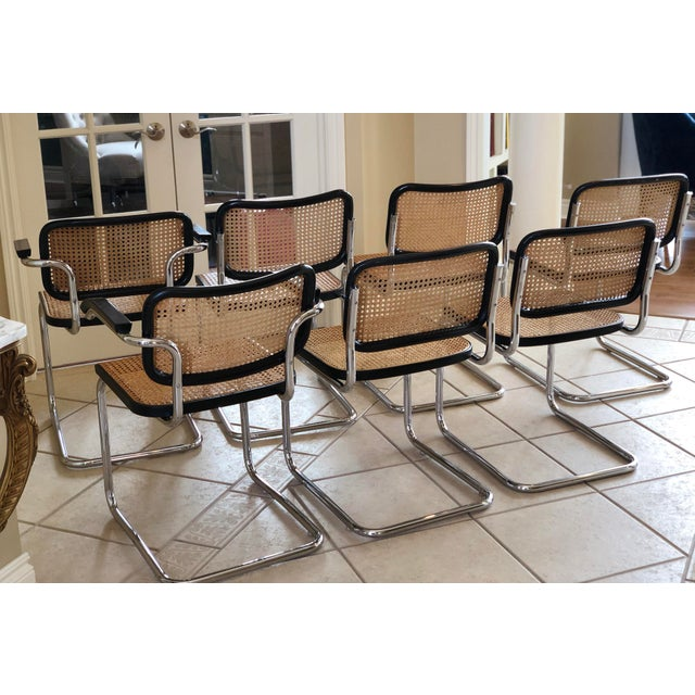 Black 1950s Knoll Authentic Ebonized Beech Cesca Chairs – Set of 7 For Sale - Image 8 of 12
