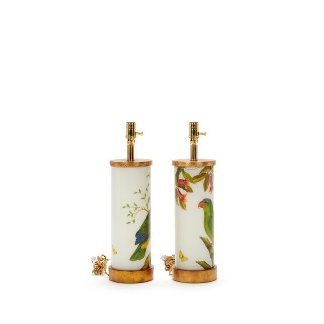 Gorgeous pair of green parrots with vines, dragonfly, and butterflies on soft white ground. These slender cylinders have...