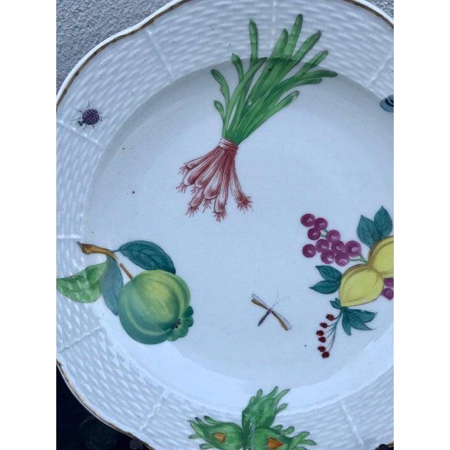 Three Antique European Naturalistic Porcelain Plates For Sale - Image 9 of 13