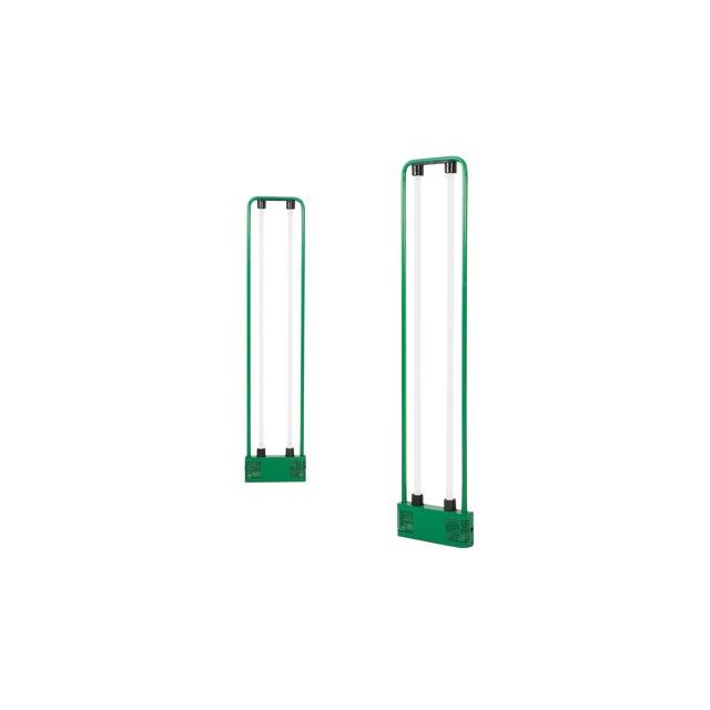 Gian Nicola Gigante Green Neon Floor Lamp For Sale