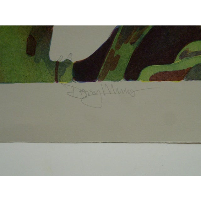"""C Print Limited Edition """"Daisy Mums"""" Signed Numbered (72/100) Print by Bukonik For Sale - Image 7 of 10"""
