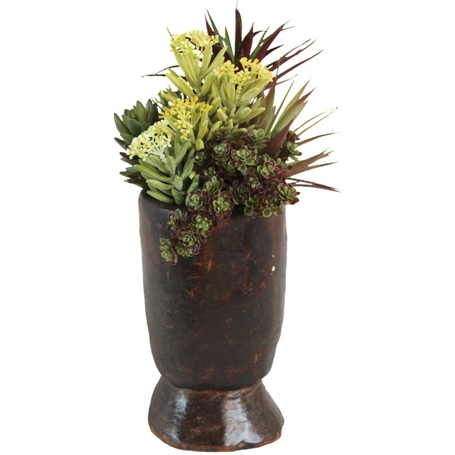Vintage Wood Pot with Succulents - Image 1 of 2