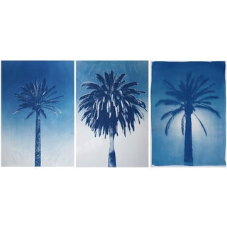 Desert Palm Trio, Hand Painted Cyanotype Triptych on Watercolor Paper, 100x210 Cm, Limited Edition, For Sale