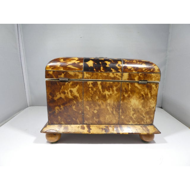 19th Century Tortoise Shell Tea Caddy For Sale - Image 9 of 13