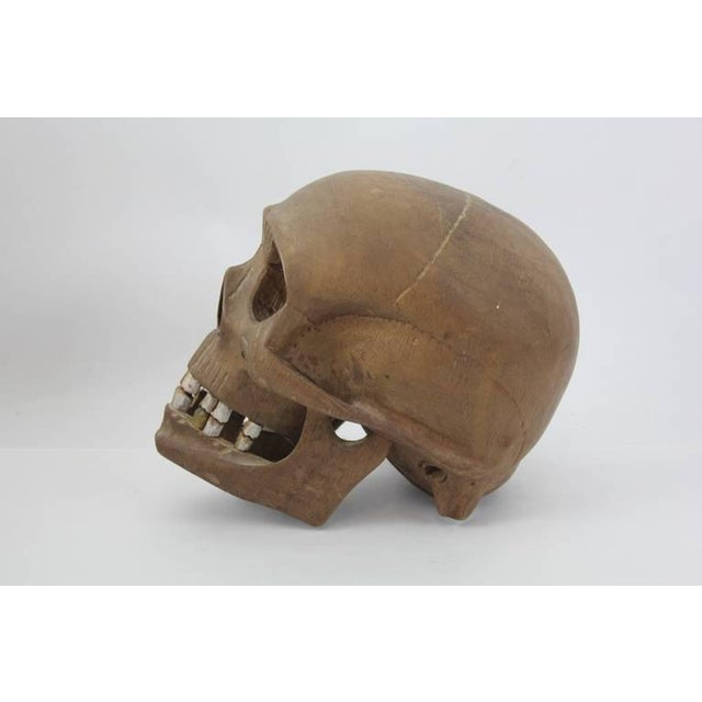 Early 20th C. Vintage Hand-Carved Wooden Skull For Sale In Greensboro - Image 6 of 6