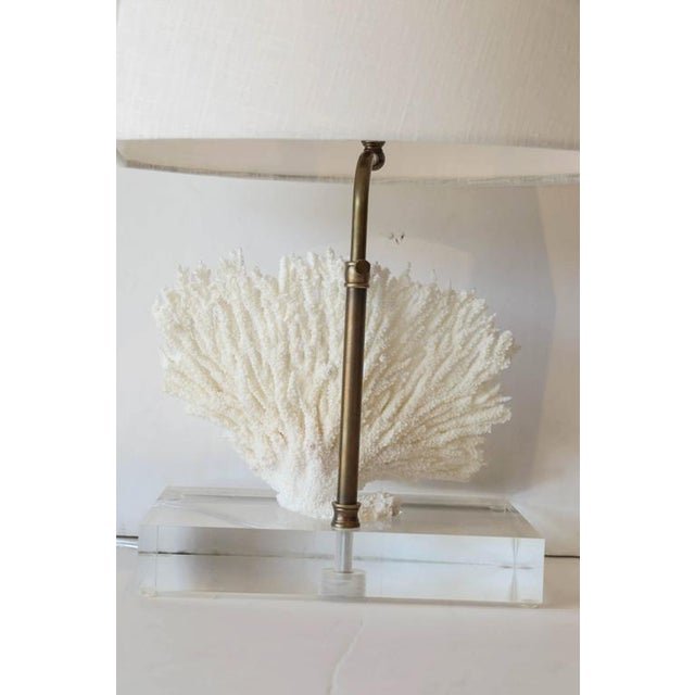 Coral Lamp - Image 3 of 10