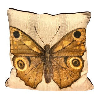 Beautiful Butterfly Pillow Print of Original Artwork on Pillow For Sale