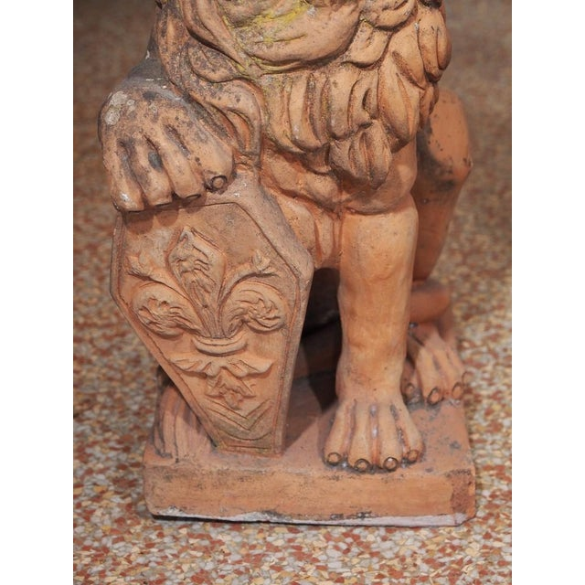 Orange Early 19th Century Italian Terra Cotta Lions - Pair For Sale - Image 8 of 9