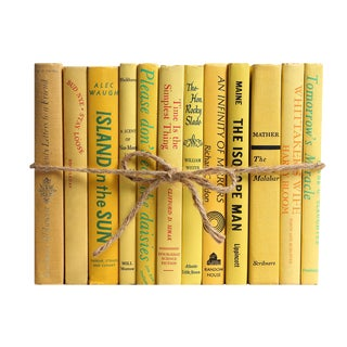 Midcentury Daffodil ColorPak - Decorative Books in Shades of Yellow