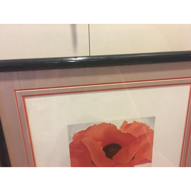Framed Georgia O'Keefe Red Poppy Print For Sale - Image 4 of 4