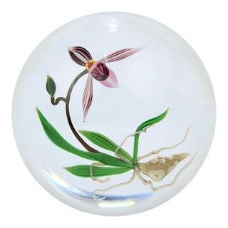 Chris Buzzini Artist-Proof Orchid Flower and Roots Art Glass Paperweight For Sale