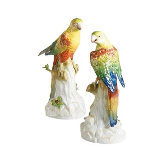 Yellow Parakeets - a Pair