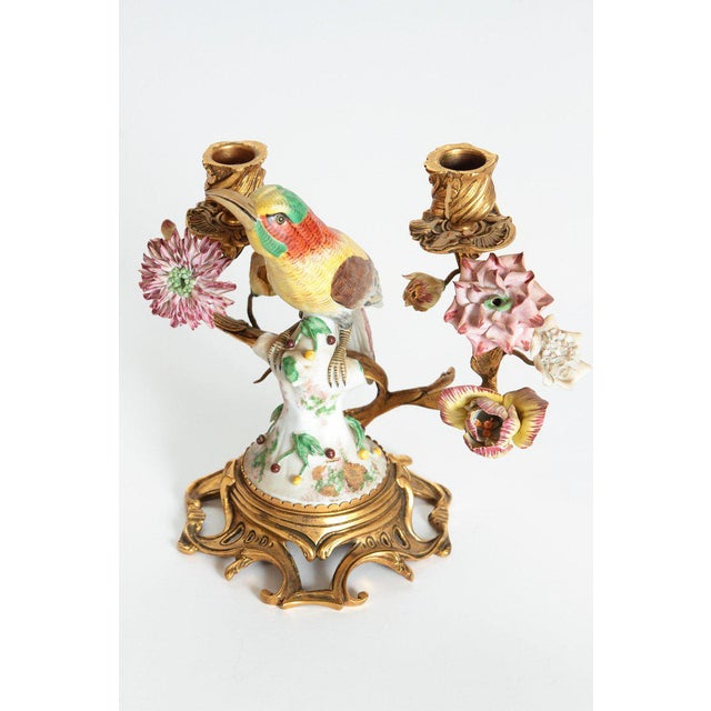 Bronze Pair of Early 20th Century Italian Porcelain Birds Mounted as Candelabra For Sale - Image 7 of 13