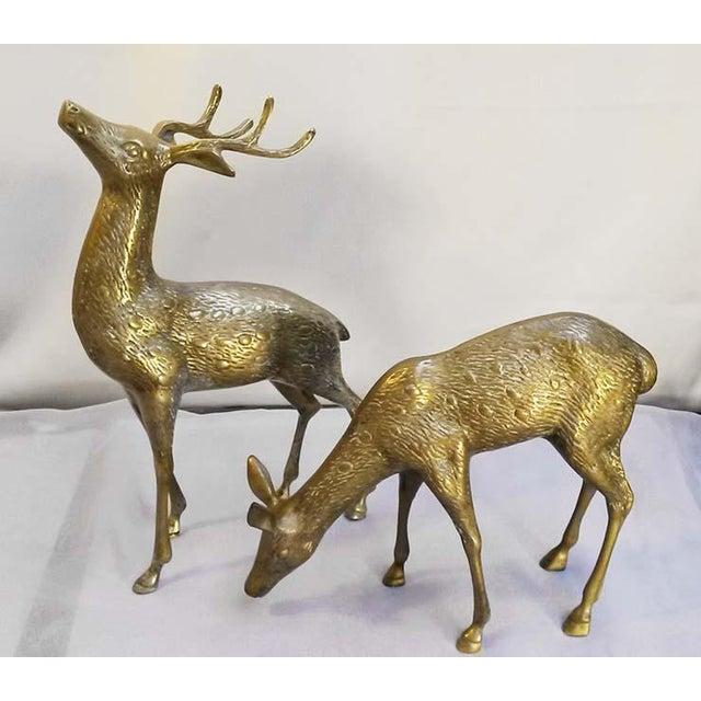 Large Vintage Brass Deers - A Pair - Image 2 of 6