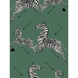 Image of Sample, Scalamandre Zebras, Serengeti Green Wallpaper For Sale