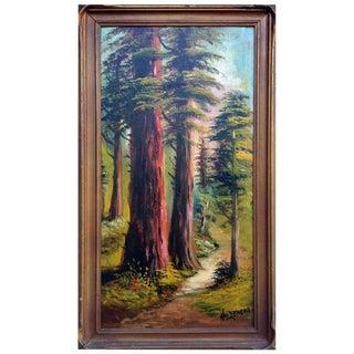 Santa Cruz Redwoods For Sale