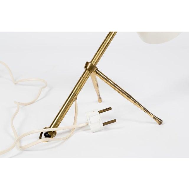 White Giuseppe Ostuni for Oluce, Table or Desk Lamp for Oluce, 1950s For Sale - Image 8 of 12