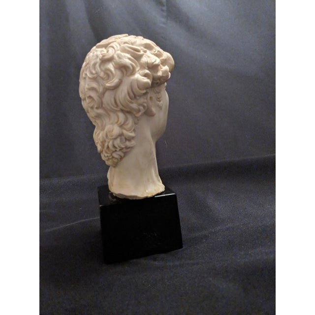 """A. Giannelli Alabaster Sculpture Bust of """"David"""" Marble Base For Sale - Image 6 of 7"""