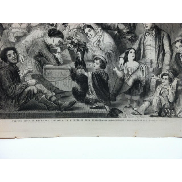 """English 1858 Antique Illustrated London News """"Welcome Given in Melbourne Australia to a Primrose From England"""" Print For Sale - Image 3 of 5"""