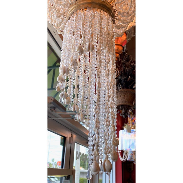 """French 64"""" Crystals and Shells 9 Light Coastal Chandelier For Sale - Image 10 of 13"""
