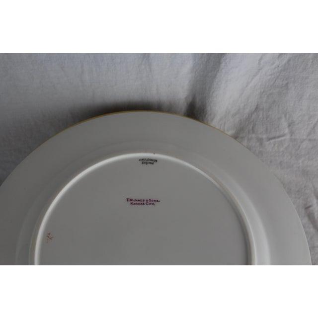 English Traditional Cauldon English Gold Band Porcelain Dinner Plates - Set of 12 For Sale - Image 3 of 5