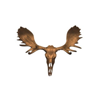 Wall Charmers Alberta Faux Bronze Resin Moose Head Skull