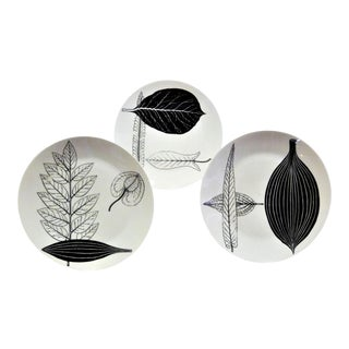 1950s Fornasetti Foglie or Folilage Plates - Set of 3 For Sale