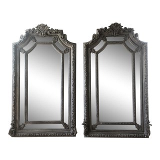 1970s Acanthus Grey Floor Mirrors - a Pair For Sale