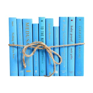 Modern Sky ColorPak - Decorative Books in Shades of Light Blue For Sale