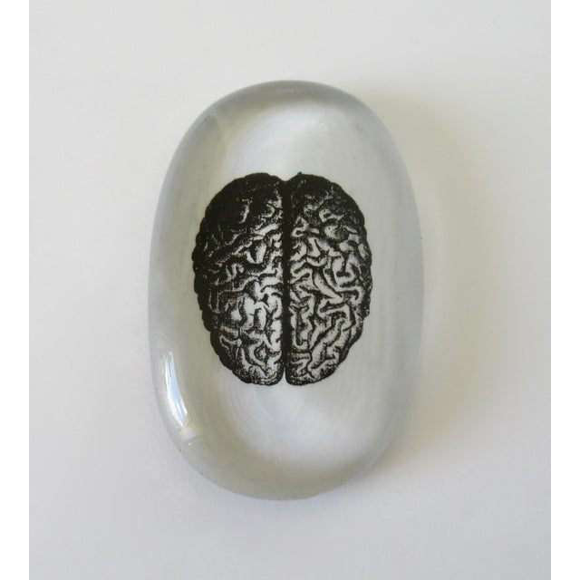 Modernist take on the vintage glass art paperweights. This item is of a screen print brain, underlaid to glass oblong,...