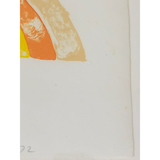 """Metal """"Rainbow"""" Jim Dine Signed Limited Edition Lithograph, 1972 For Sale - Image 7 of 13"""