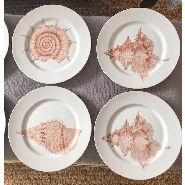 Fitz & Floyd Coquille Nautical Dinner Plates - Set of 8 For Sale - Image 5 of 7